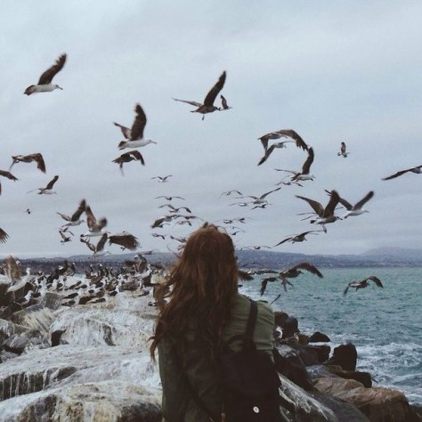 bird-free-freedom-girl-Favim.com-2728316.jpg